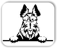 Wandtattoo - Hunde - Scottish Terrier - ohne Rassename