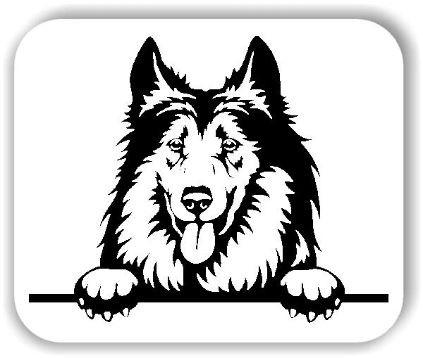 Wandtattoo - Hunde - Colli - ohne Rassename