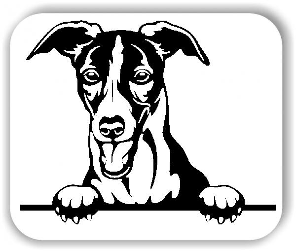 Wandtattoo - Hunde - Whippet - ohne Rassename