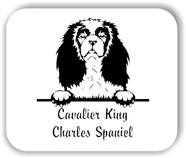 Wandtattoo - Hunde - Cavalier King Charles Spaniel