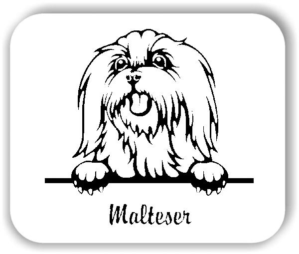 ❤ Wandtattoo - Hunde - Malteser Variante 2 ❤