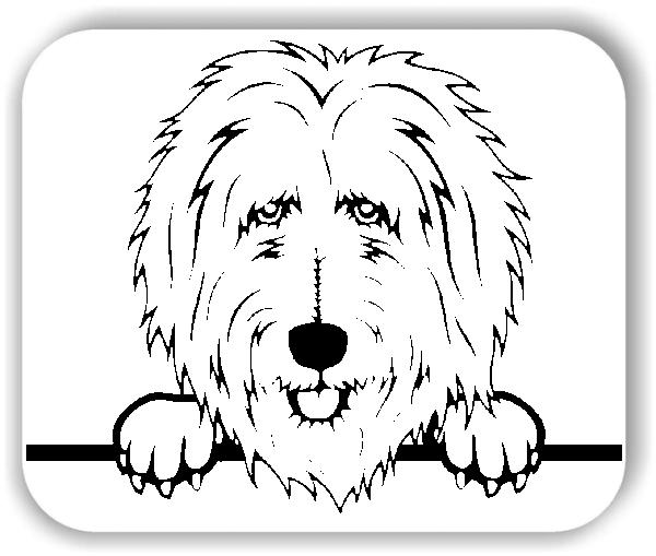 Wandtattoo - Hunde - Goldendoodle - ohne Rassename