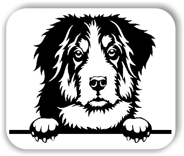 Wandtattoo - Hunde - Berner Sennenhund - ohne Rassename