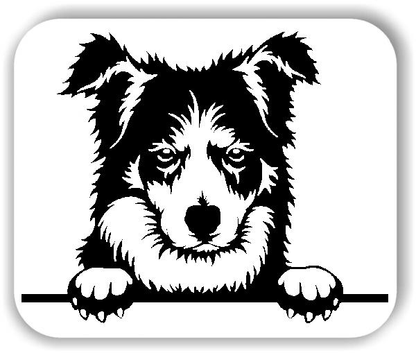 Wandtattoo - Hunde - Border Collie - ohne Rassename