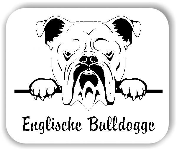 Wandtattoo - Hunde - Englische Bulldogge