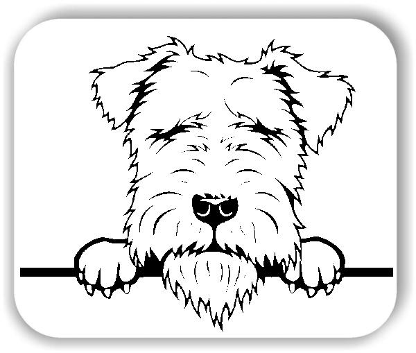 Wandtattoo - Hunde - Lakeland Terrier - ohne Rassename