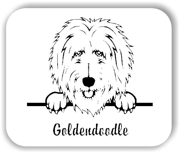 Wandtattoo - Hunde - Goldendoodle
