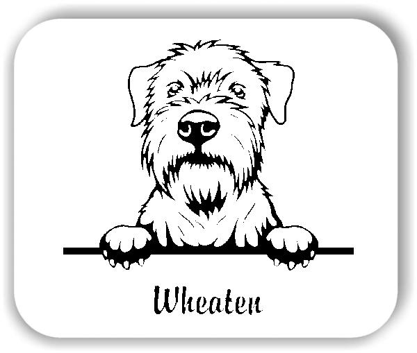 Wandtattoo - Hunde - Wheaten
