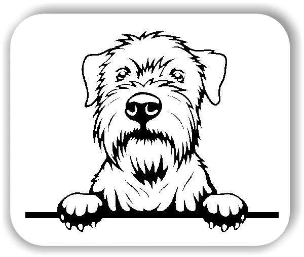 Wandtattoo - Hunde - Wheaten - ohne Rassename