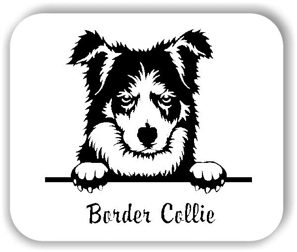 Wandtattoo - Hunde - Border Collie