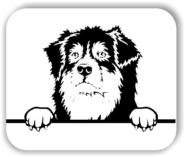 Wandtattoo - Hunde - Australian Shepherd - ohne Rassename