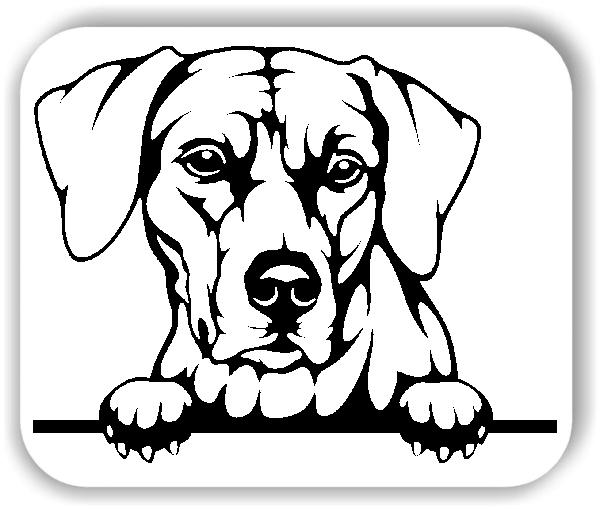 Wandtattoo - Hunde - Rhodesian Ridgeback - ohne Rassename