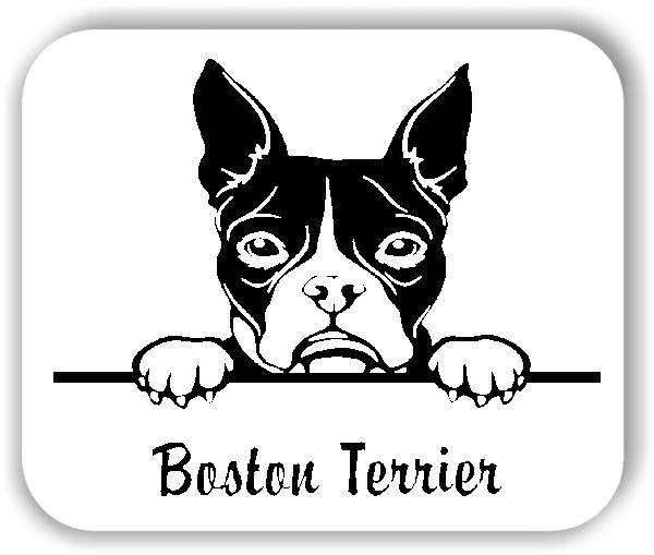 Wandtattoo - Hunde - Boston Terrier